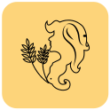 Virgo Daily Horoscope August 25 2015