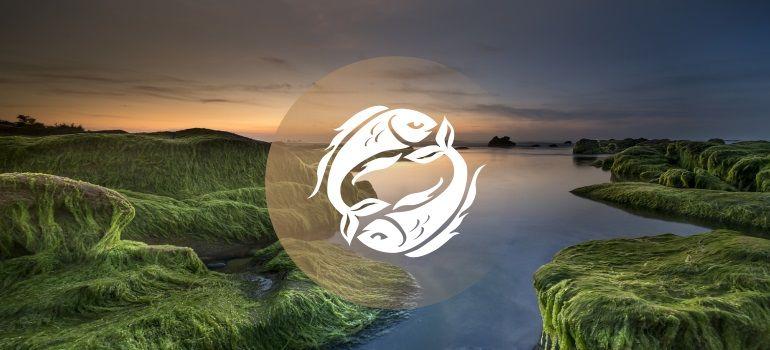 Pisces June 2018 Monthly Horoscope