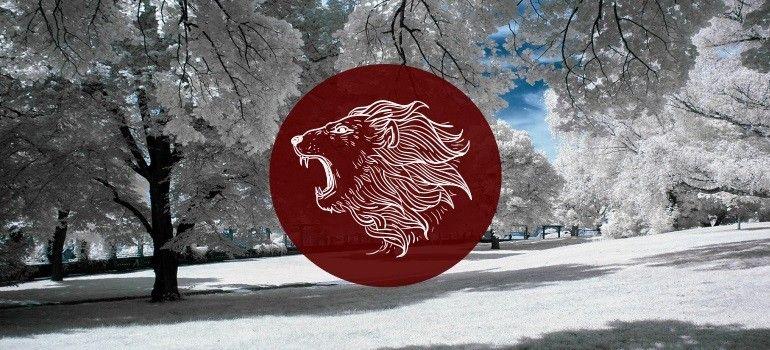 Leo January 2019 Monthly Horoscope