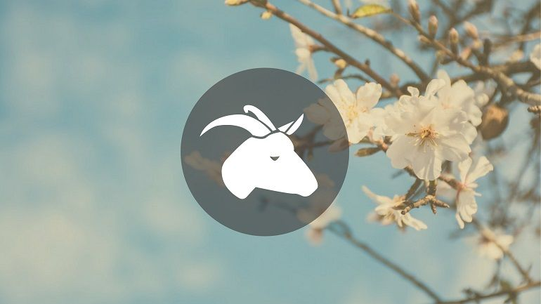 Capricorn March 2019 Monthly Horoscope
