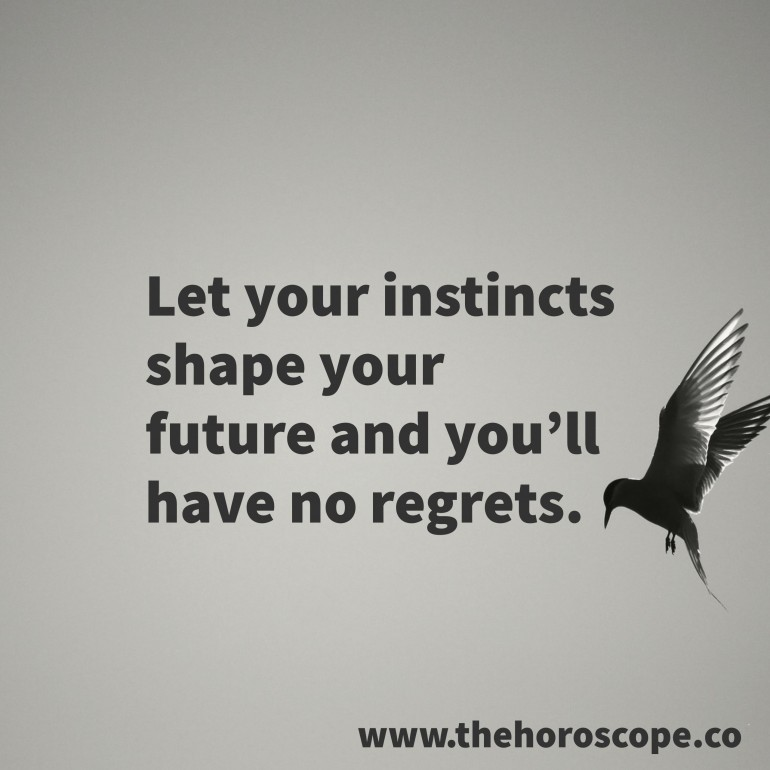 Let your instincts shape your future and you'll have no regrets.