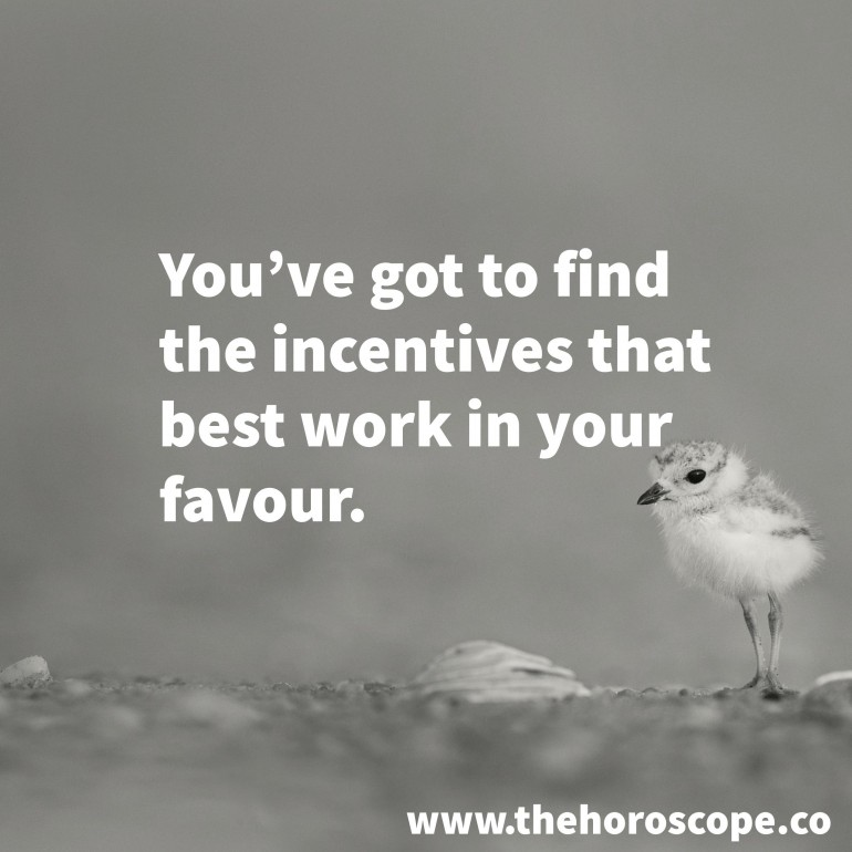 You've got to find the incentives that best work in your favour.