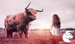Are Taurus Men Jealous And Possessive?