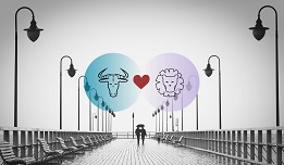 Taurus And Leo Compatibility In Love, Relationship And Sex