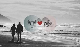 Scorpio And Taurus Compatibility In Love, Relationship And Sex