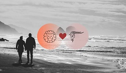 Capricorn And Leo Compatibility In Love, Relationship And Sex