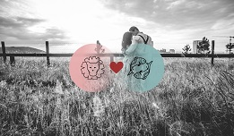 Pisces And Leo Compatibility In Love, Relationship And Sex